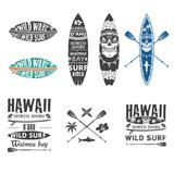 Surfing emblem set 2 - 85840298
