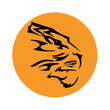 Detaily fotografie Tiger