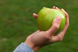 Protege tu salud con una comida sana: manzana