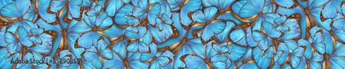 Plexiglas Vlinder abstract background tropical butterflys Morpho menelaus