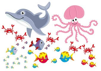 ryby,delfin,ośmiornica