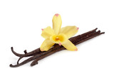Fototapety Vanilla pods with one yellow orchid.