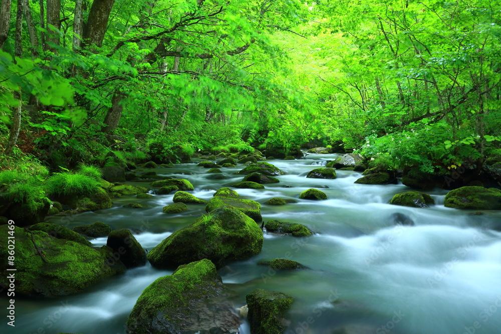 奥入瀬渓流 三乱の流れ