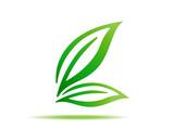 gren leaf symbol sign vector icon