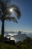 Fototapeta The sun rises behind a palm tree silhouette at a scenic skyline view over Guanabara Bay with a silhouette of Sugarloaf Mountain in Rio de Janeiro, Brazil