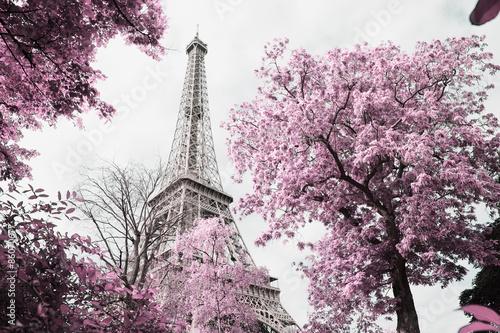 Eiffel tower © nelson garrido silva