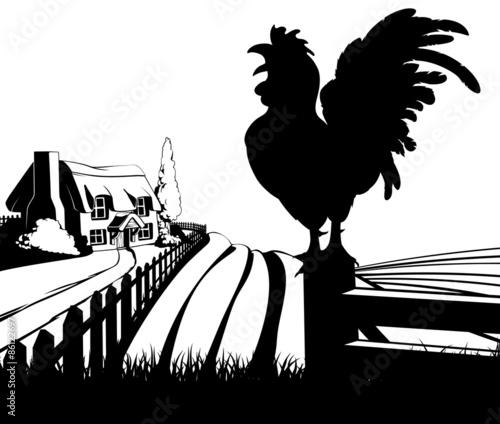 Foto op Aluminium Boerderij Cockerel crowing farm illustration