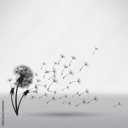 blowing dandelion - 86123632