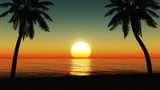 Fototapety Sunset at the tropical beach with coconut palm trees silhouette