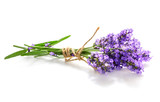 Fototapety Lavender bunch isolated on white background