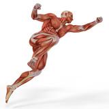 sval lékařské muž golkeeper jump
