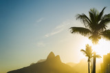 Fototapeta Sunset in Rio de Janeiro Ipanema Beach Brazil with Two Brothers Dois Irmaos Mountain and golden sun through palm trees silhouettes