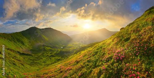 fototapeta na ścianę W letnich górach