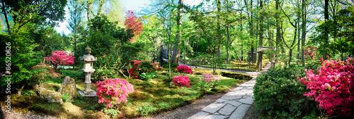 Fototapeta nature background panorama