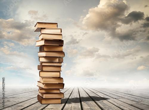 Column of books Poster