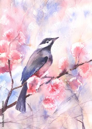kolor-wody-rysunek-ptaka-na-galezi