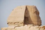 Fototapeta Egypt's Structure
