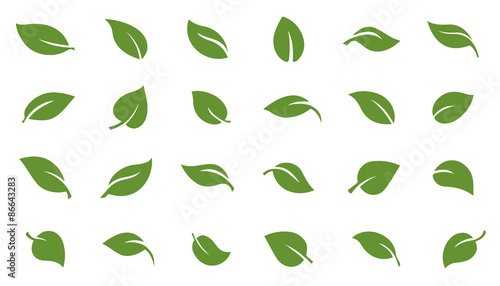 leafs green - 86643283