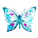 Fototapeta Motyle - butterfly,watercolor design © aboard