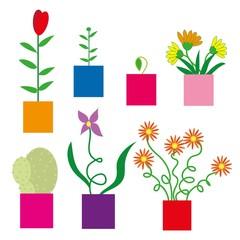 ptaki,przyroda,kwiaty
