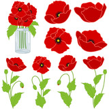 Red Poppies Set