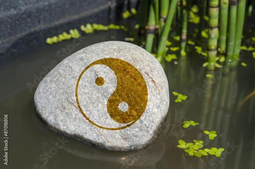 Poster Stein in Wasser mit OM, Yoga, Tai Chi, Qi Gong, Feng Shui Mit Wasserlinsen und S
