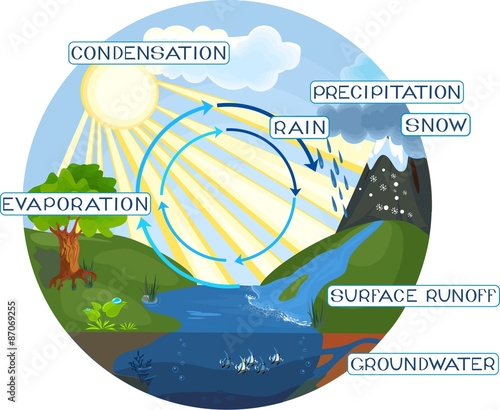 poster of The water cycle