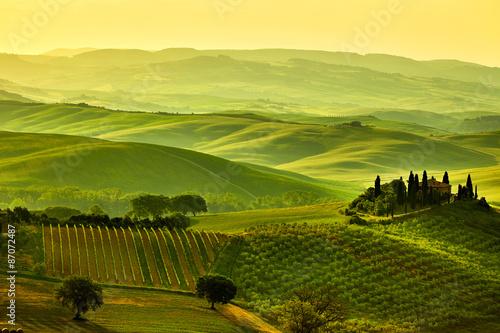 Fototapeta Tuscany hills