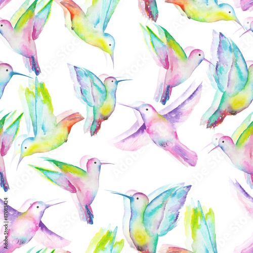Seamless pattern of colored colibri painted with watercolors on a white background © nastyasklyarova