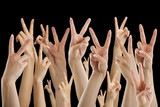 many hands showing victory sign, isolated on black - 87160458