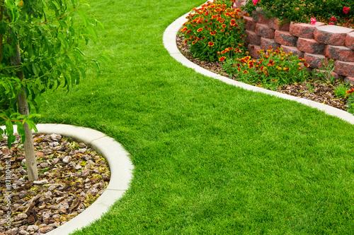 Foto Murales Garden