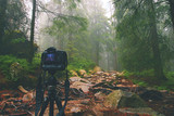 Fototapeta Digital camera on tripod in forest. 