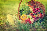 Fototapeta Basket With Fresh Organic Vegetables