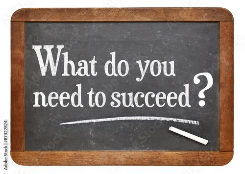 Fototapeta What do you need to succeed?