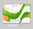 Vector illustration template leaflet design with color lines