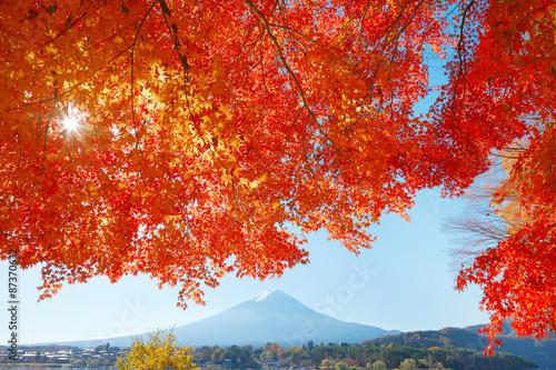 Fotobehang Rood traf. 紅葉と富士山