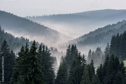 Foggy Landscape. View From Mountains to the Valley Covered with Foggy. - 87403220