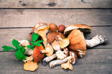 Forest mushrooms on wooden background