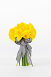 Yellow daffodil bouquet with white background and light shadow