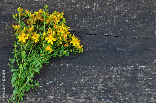 Sheaf of St. John's wort Photo by fotocof