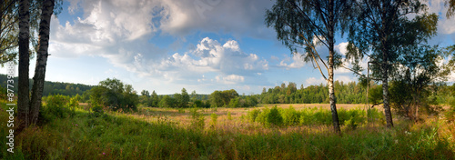 Summer morning landscape panorama forest  sunrise