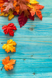 Fototapety Autumn background with colorful leaves on wooden background
