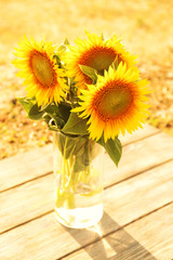 Beautiful sunflowers in vase on wooden table outdoors