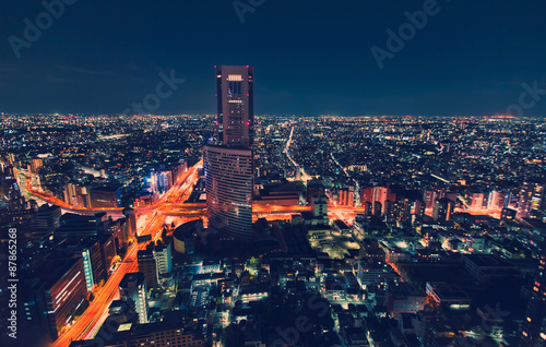 Poster, Tablou Aerial view cityscape at night in Tokyo, Japan