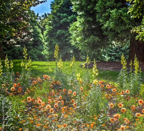 Panel Szklany Flowers