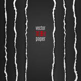 Fototapety Black torn paper
