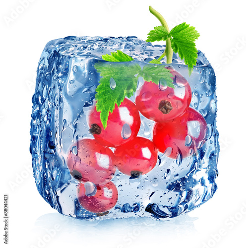 Red berries of currant in ice - 88044421