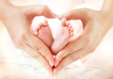 baby feet in mother hands - hearth shape