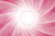 Phantasie aus Kreis und Brechnung in Rose