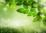 Fototapety Abstract spring background 23
